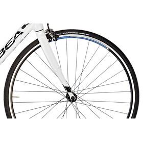 ORBEA Avant H50 white/black/blue